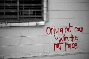 Only a rat can win the rat race